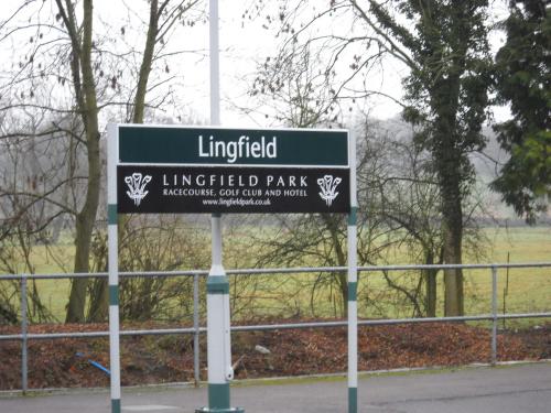 Lingfield_2449.JPG