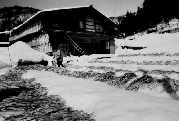 冬の寒ざらし.jpg