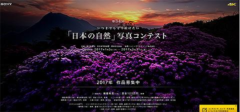 日本 の 自然 写真 コンテスト