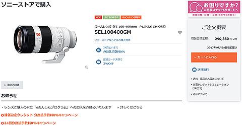 SEL100400GM.jpg