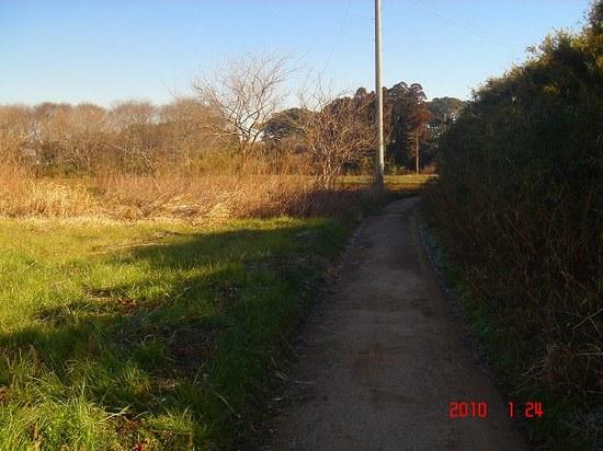 丘の上DSC02023.jpg