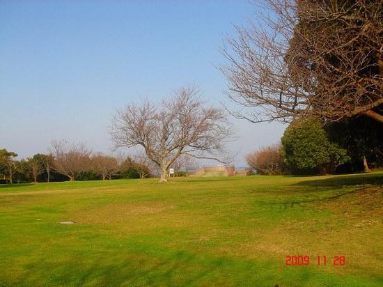 芝生の広場DSC00759.jpg