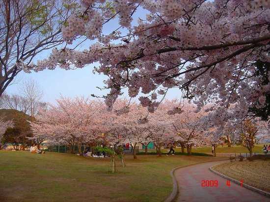 袖ヶ浦公園3.jpg