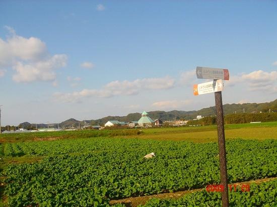 道の駅DSC00918.jpg