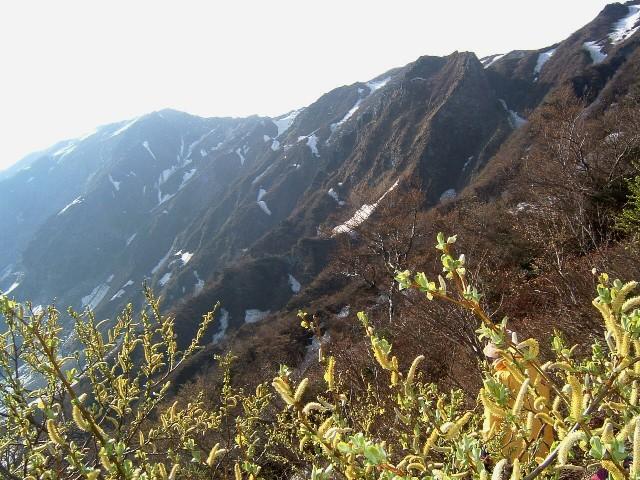 大山北面090505 043.ajpg.jpg