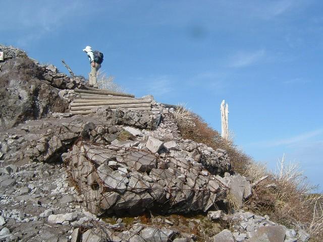 大山7合目附近山稜090505 052.ajpg.jpg