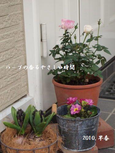 P2090396文字入.jpg
