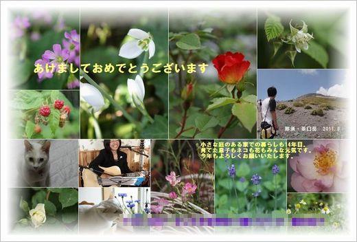 2012年賀状ブログ用.jpg