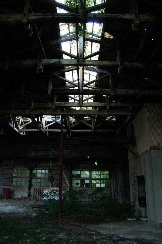 屋根は光を入れる構造みたいです.JPG