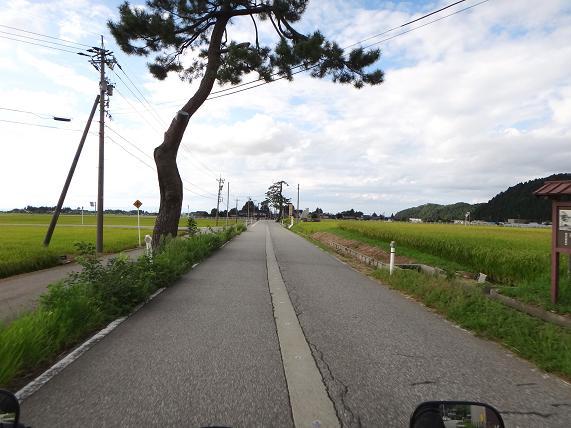 16 広域農道です.JPG