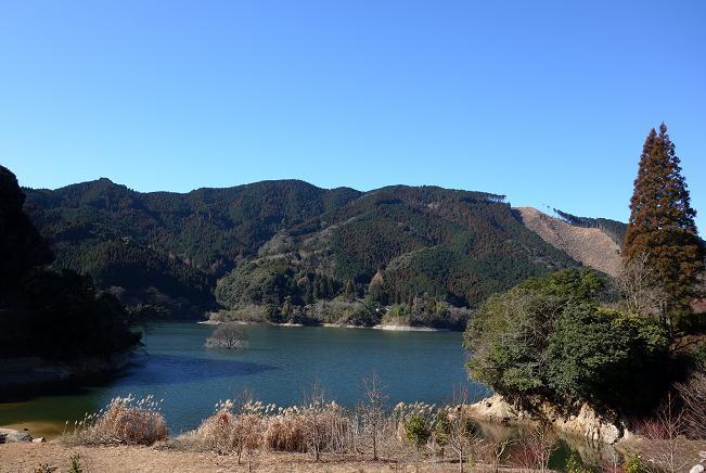 5 油木ダムです.JPG