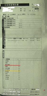 細菌検査報告書.jpg