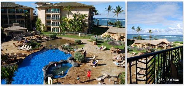 hawaii09-11.jpg