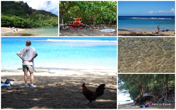 hawaii09-13.jpg