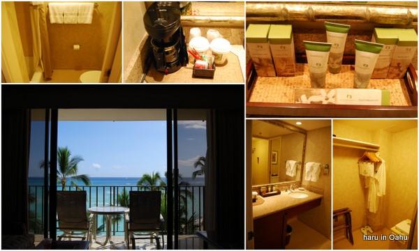 hawaii09-3.jpg