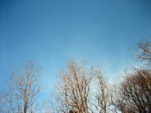 20120305空.jpg