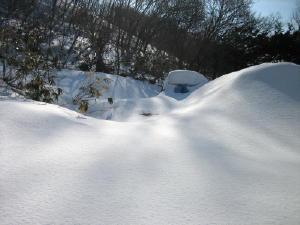 20120305雪3.jpg