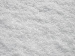 20120305雪5.jpg