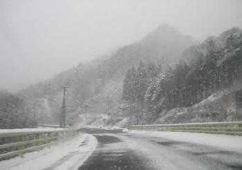 冬道.jpg