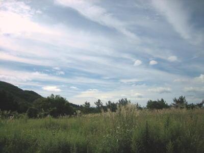 秋景色3.jpg