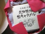 blogkyarameru2.jpg