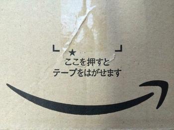 Amazon0.jpg
