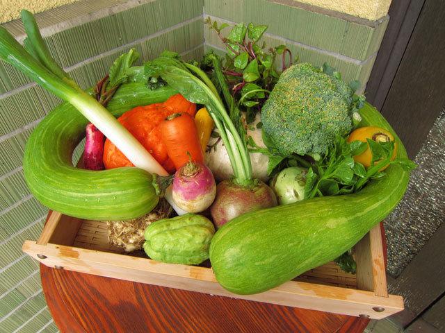 bIMG_0181野菜.jpg