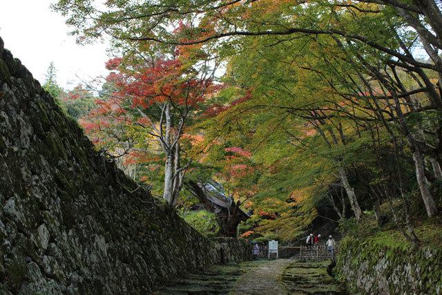 bIMG_0790 百済寺参道.jpg
