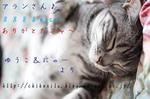 m_8888nice!.jpg