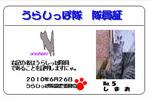 urashippo-no_5-shimao-4823d.jpg