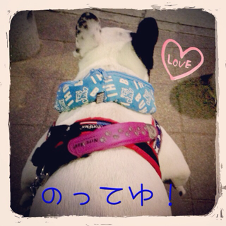 image-20140611143315.png