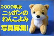 わんこよみ2009-ba.JPG