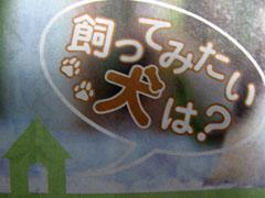g7_20091122_003-bl_s.jpg