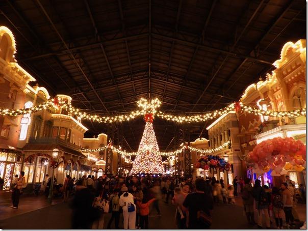 20141107_TDLのクリスマス飾り_011