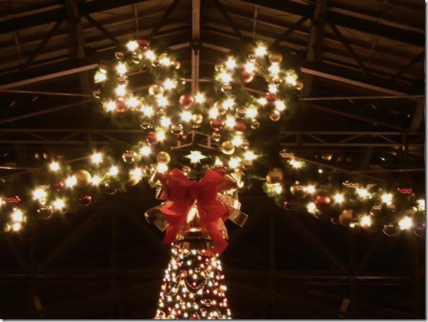 20141107_TDLのクリスマス飾り_009