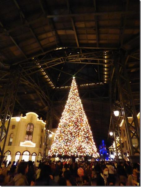 20141107_TDLのクリスマス飾り_012