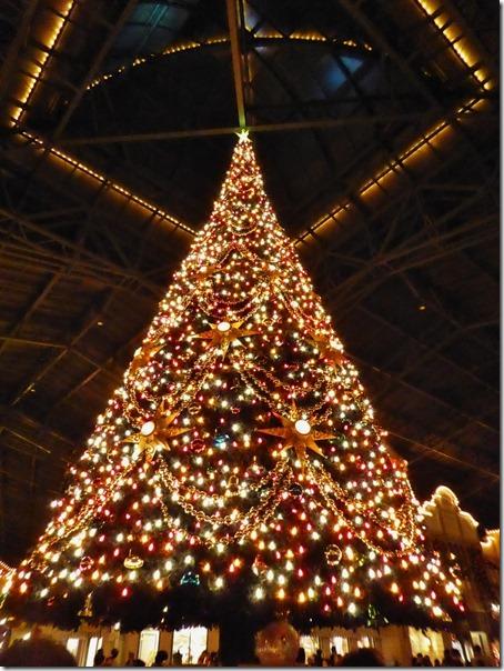 20141107_TDLのクリスマス飾り_013