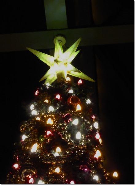 20141107_TDLのクリスマス飾り_014