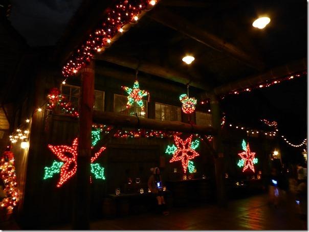 20141107_シーのクリスマスの夜景_064