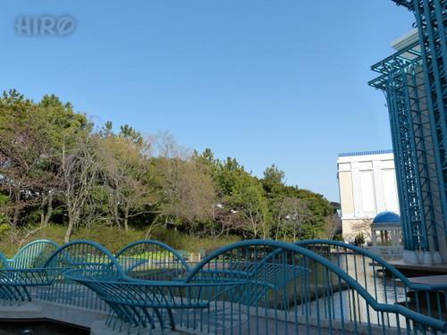 20130302_アンバの梅&河津桜_22.jpg