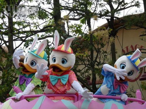 イースターパレード_20110503_31.jpg