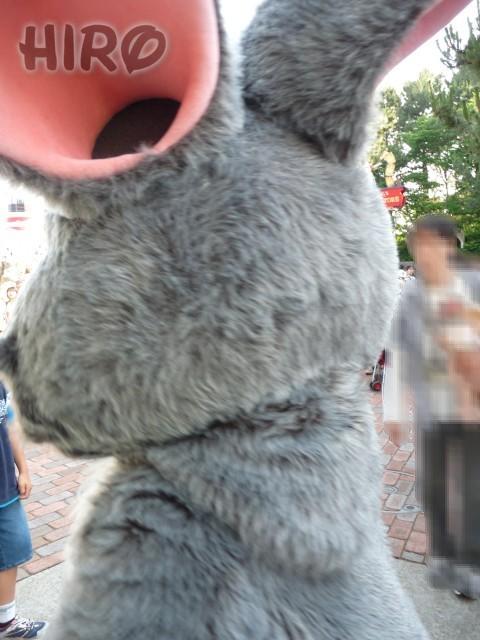 ケープ・グリ_20100612_006.jpg