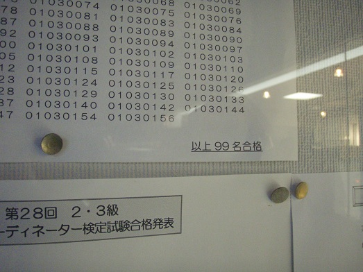 P9030032.JPG