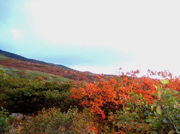 0801012鳥海山登り紅葉  007a.jpg