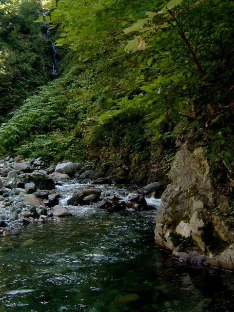 080902幌尻岳額平川 109.ajpg.jpg