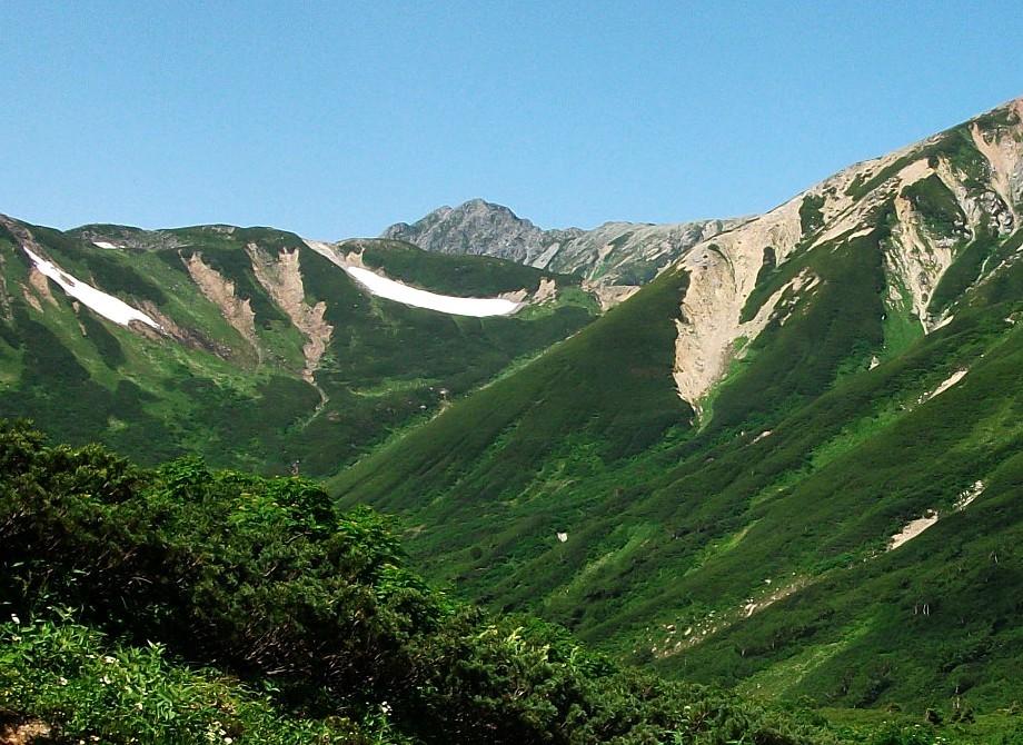水晶岳を望む20130809 201-1.jpg