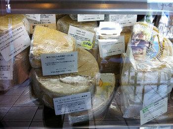 チーズ!!!!.jpg