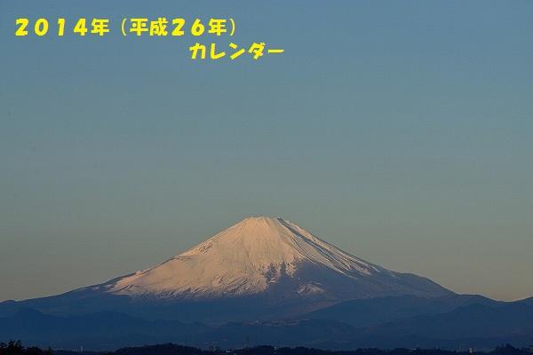 D6T_0860dYY.jpg