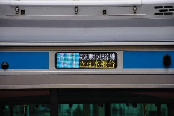 DSC_0062t.jpg