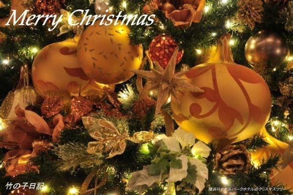クリスマスカードx.jpg